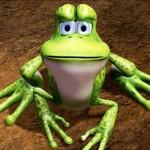 thelittlefrog